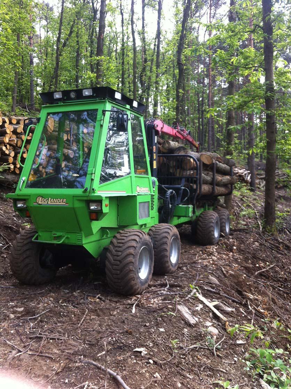 Operazioni di manutenzione boschiva Osmate (VA)