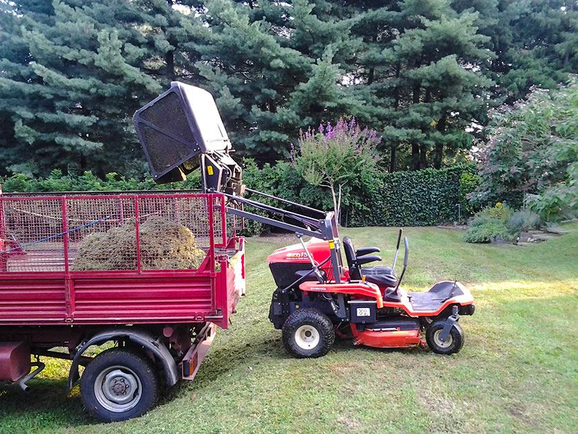 Cura e manutenzione del tappeto erboso